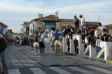 Port-Camargue (23)